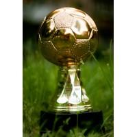 Статуэтка Astra Argenti Мяч футбольный золотистый большой