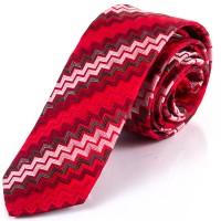 Мужской галстук Schönau FARESHY-20