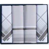 Мужские носовые платки Guasch Titanium 90-06