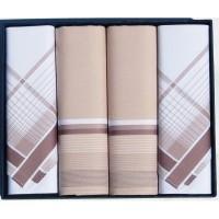 Мужские носовые платки Guasch Titanium 90-05