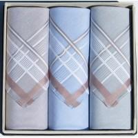 Мужские носовые платки Guasch Apolo 95-07