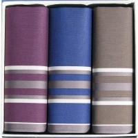 Мужские носовые платки Guasch Apolo 96-06
